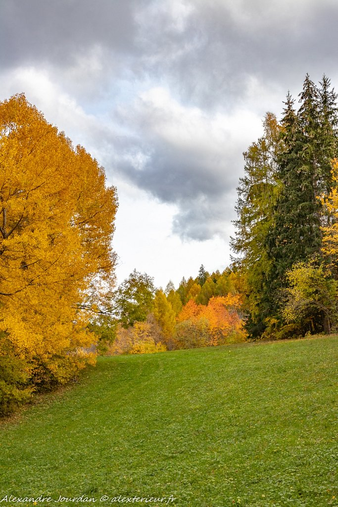 L'automne et ses merveilles